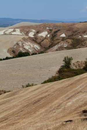 Crete Senesi - The landscape of the  Tuscany. Italy Stock Photo - 14835610