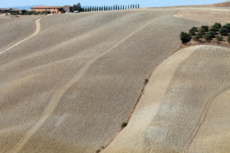 Crete Senesi - The landscape of the  Tuscany. Italy Stock Photo - 15184455