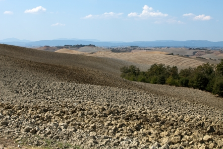 Crete Senesi - The landscape of the  Tuscany  Italy Stock Photo - 15201719