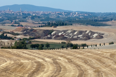 Crete Senesi - The landscape of the  Tuscany. Italy photo