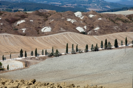Crete Senesi - The landscape of the  Tuscany  Italy Stock Photo - 14982229