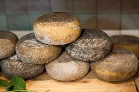 Typical  Tuscany Cheese Pecorino of Pienza photo