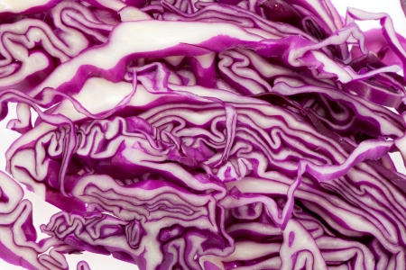 Red  Cabbage  on White Background  photo