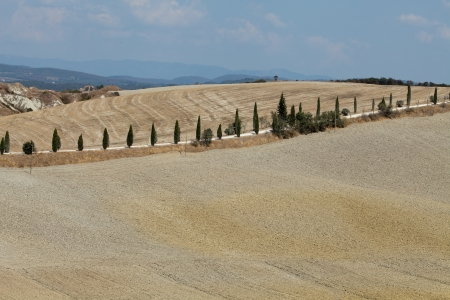 Crete Senesi - The landscape of the  Tuscany  Italy Stock Photo - 15151930