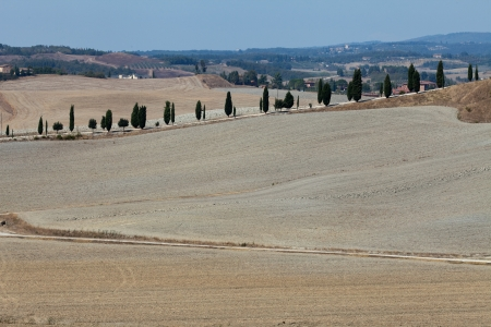 Crete Senesi - The landscape of the  Tuscany  Italy Stock Photo - 15151942