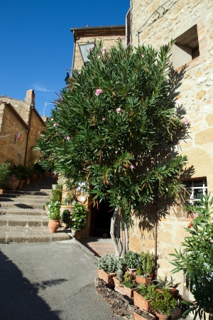 The town of Pienza is a small pearl in the Tuscan countryside photo