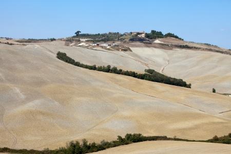 Crete Senesi - The landscape of the  Tuscany. Italy Stock Photo - 15444161