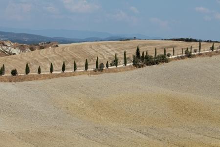 valdorcia: Crete Senesi - The landscape of the  Tuscany. Italy Stock Photo