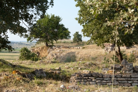 Ancient ruins in Troy.  Turkey  photo