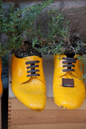 old shoes processed on flowerpots Stock Photo - 16043033