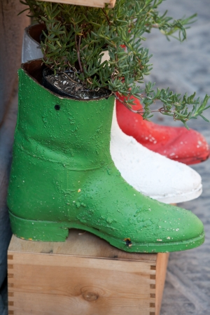 processed: old shoes processed on flowerpots Editorial