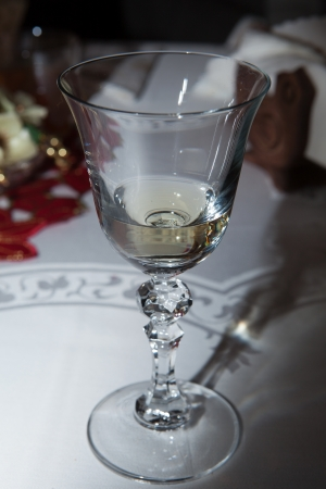 vin: the glass of the vin blanc