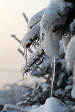 서리가 내린 오후에 겨울 노출
