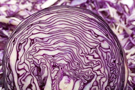 White and Red  Cabbage photo
