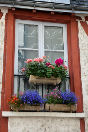 window with colorful flowers. Valley of the river Loire. France Stock Photo - 21228481