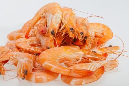 fresh shrimp  isolated on a white background 版權商用圖片 - 21663109