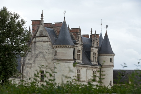 leonard:  Amboise castle .Valley of the river Loire. France