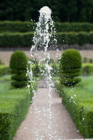 herbs de provence: Gardens and Chateau de Villandry  in  Loire Valley in France  Editorial