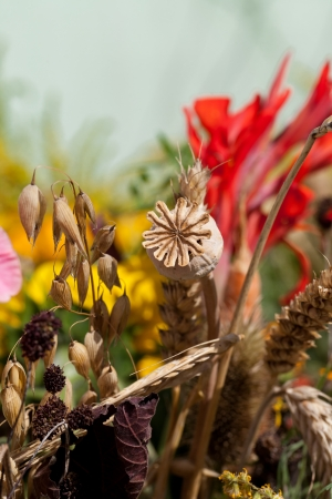 beautiful bouquets of flowers, herbs and cereals