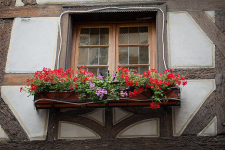 timbered: Half timbered houses of Colmar, Alsace, France