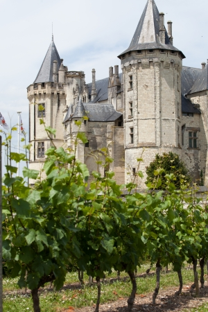 pays: Castle of Saumur in Loire Valley, France