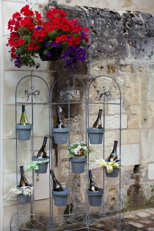 Bottles of wine in flowerpots - most beautiful French flowers Stock Photo