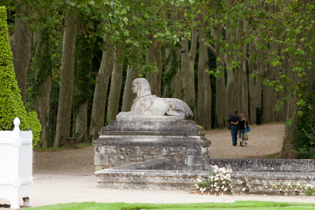 An avenue of trees in the grounds of the chateau of Chenonceau in France