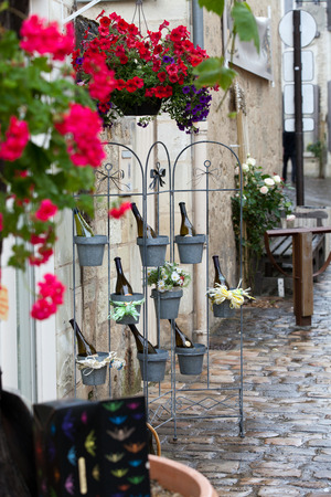 cote de nuits: Bottles of wine in flowerpots - most beautiful French flowers Stock Photo