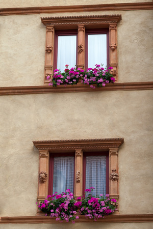 chinon: the window with shutters and flower pots