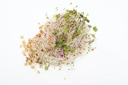 건강한 다이어트. 흰색 배경에 고립 된 신선한 콩나물