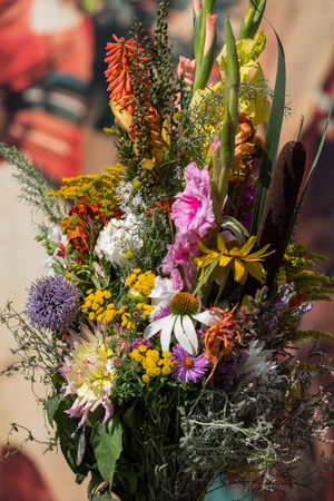 gladiolus: beautiful bouquets of flowers and herbs