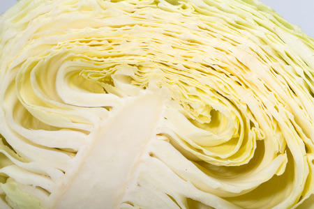 white  cabbage, texture of cut white  cabbage showing inside curly surface