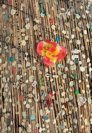 morrison: Paris - Fans stick chewing gums in the homage for Morrison on the tree close to his grave Editorial