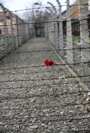 extermination: Electric fence in former Nazi concentration camp Auschwitz I, Poland