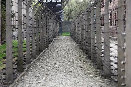 elektrischer Zaun: Elektrozaun in ehemaligen Nazi-Konzentrationslager Auschwitz I, Polen