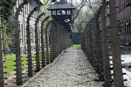 electric fence: Electric fence in former   concentration camp Auschwitz I, Poland Editorial