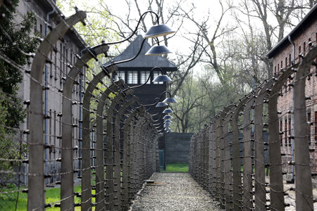electric fence: Electric fence in former German concentration camp Auschwitz I, Poland Editorial