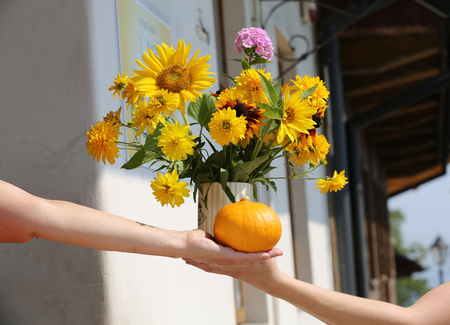 pollen: the beautiful bouquet from sunflowers, hydrangeas and chrysanthemums Stock Photo