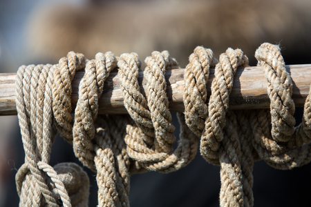 tether: Close-up of rope with