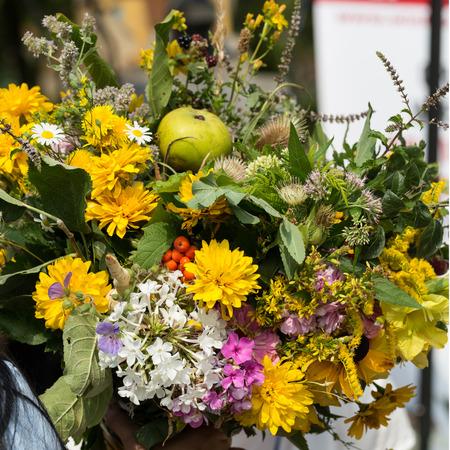 bigleaf hydrangea: handmade  beautiful bouquets from flowers and herbs