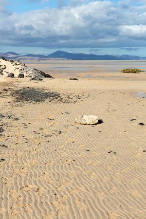 Beach Playa de Sotavento, Canary Island Fuerteventura, Spain Editorial