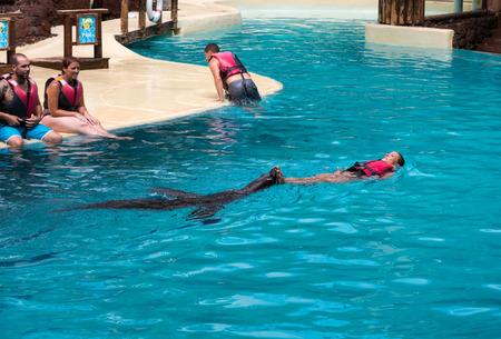canary island: LA LAJITA, FUERTEVENTURA, SPAIN - SEPTEMBER 11, 2015:  Shows sea lions in the pool,, Oasis Park, Fuerteventura, Canary Island, Spain