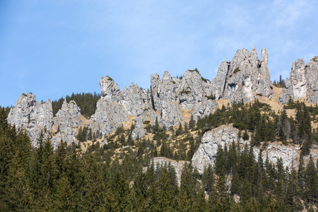 the crags: Crags (Mnichy Chocholowskie) in Chocholowska Valley. Tatra. Poland Stock Photo