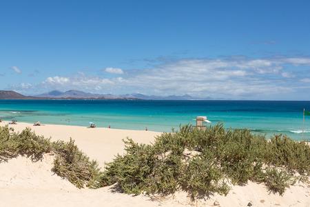 corralejo: Corralejo Beach on Fuerteventura, Canary Islands