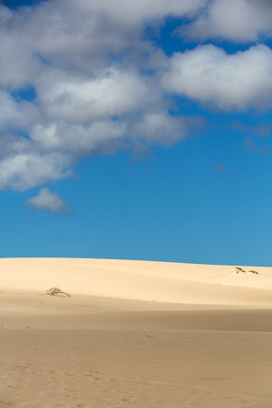 corralejo: Sand patterns after wind  on the Nature reserve, Park Natural, Corralejo, Fuerteventura, Canary Islands, Spain. Stock Photo