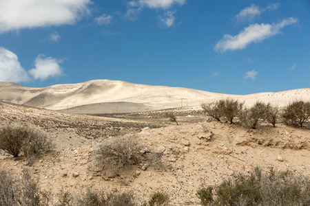canary island: The desert landscape  Costa Calma on Fuerteventura.  Canary Island. Spain