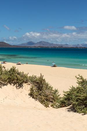 fuerteventura: Corralejo Beach on Fuerteventura, Canary Islands. Spain Stock Photo