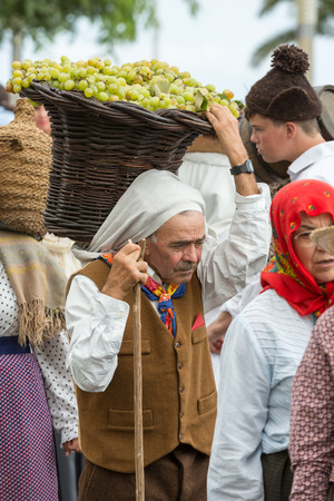 ethnographic: FUNCHAL, MADEIRA, PORTUGAL - SEPTEMBER 4, 2016: the old man carry the basket of grapes in traditional costume. Madeira Wine Festival - Historical and Ethnographic parade in Funchal on Madeira. Portugal