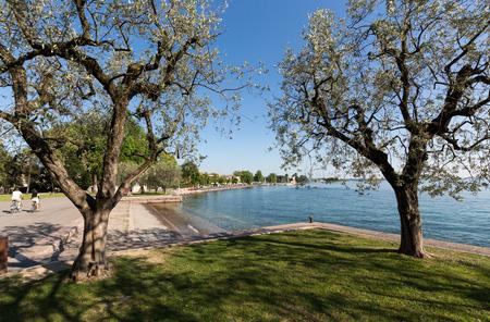 torri: Shore of the Lake Garda in Bardolino,  Italy Stock Photo