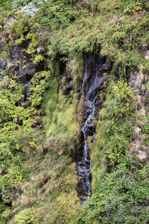 laurel mountain: Risco Waterfall of the Twenty-five Fountains Levada hiking trail, Madeira Portugal Stock Photo
